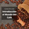 Curso de Café